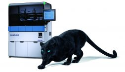 Panther und Instrument